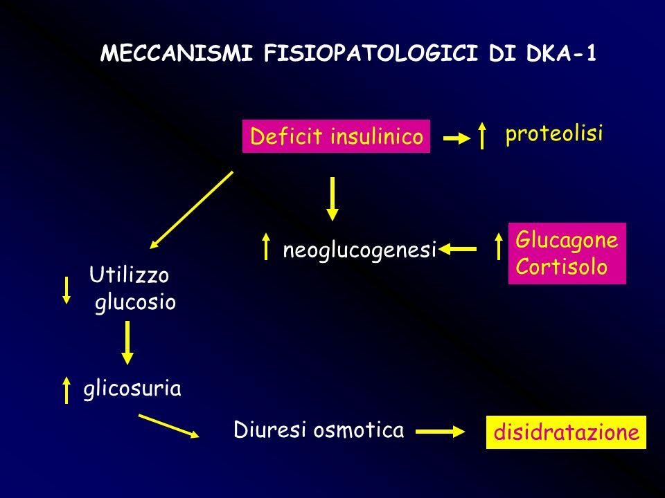 MECCANISMI FISIOPATOLOGICI DI DKA-1