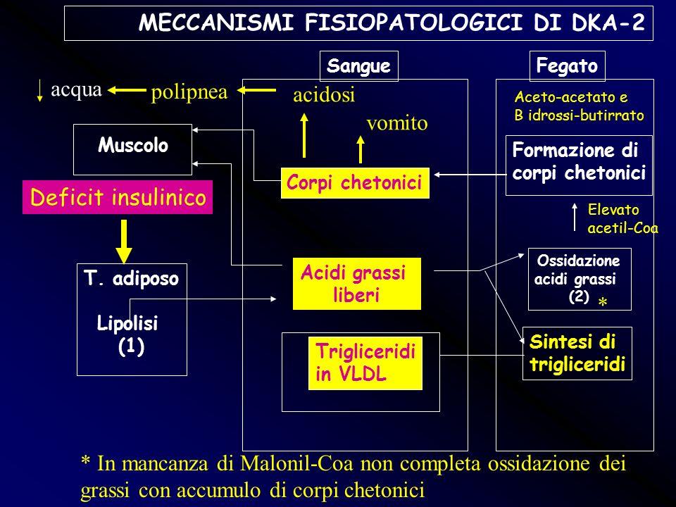 MECCANISMI FISIOPATOLOGICI DI DKA-2