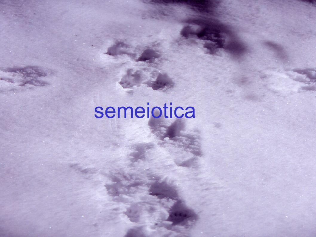 semeiotica