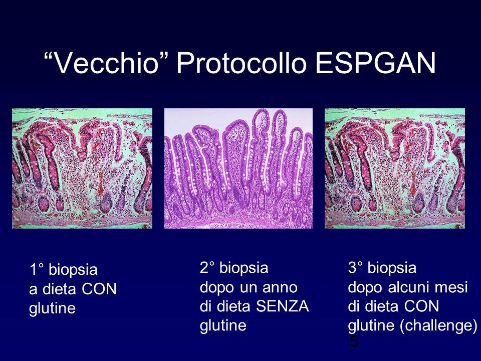 Vecchio Protocollo ESPGAN