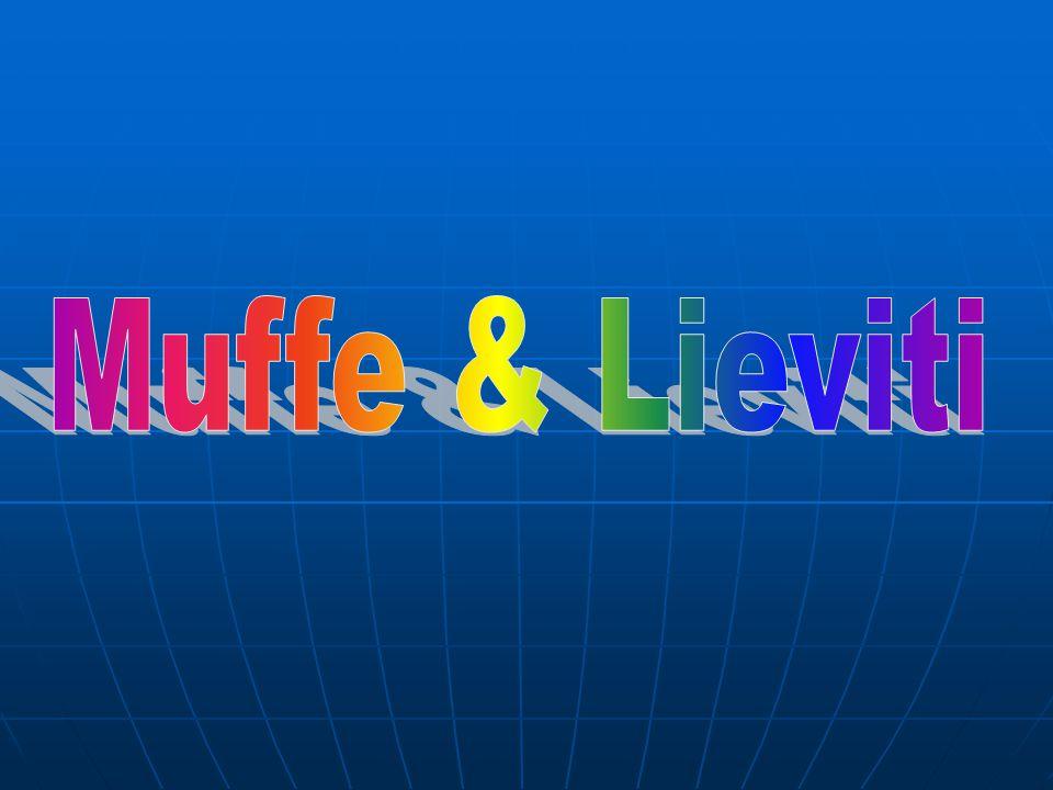 Muffe & Lieviti