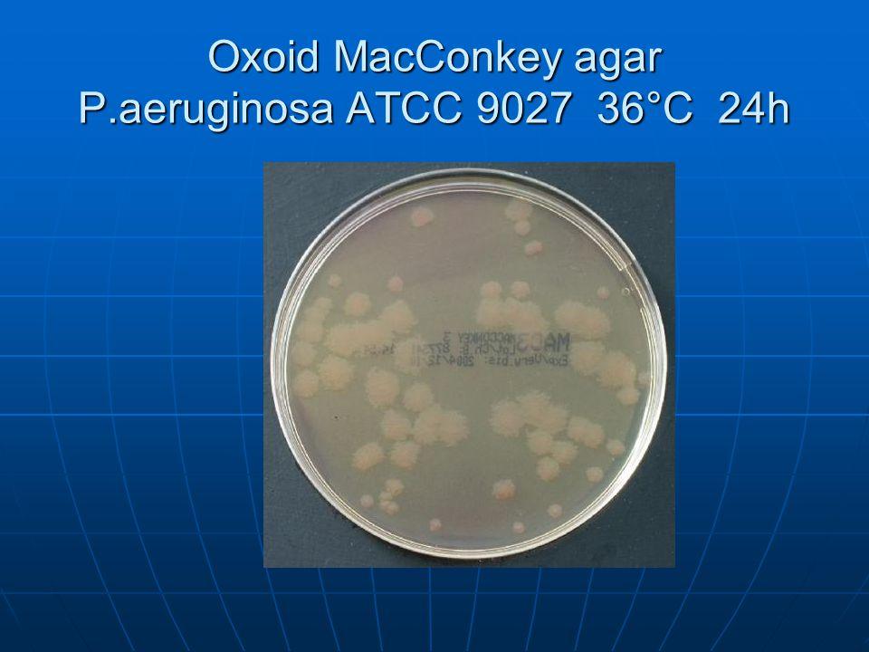 Oxoid MacConkey agar P.aeruginosa ATCC 9027 36°C 24h