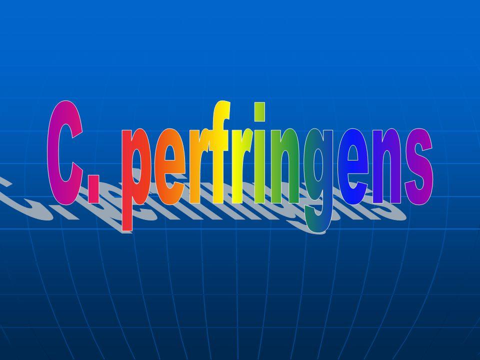 C. perfringens
