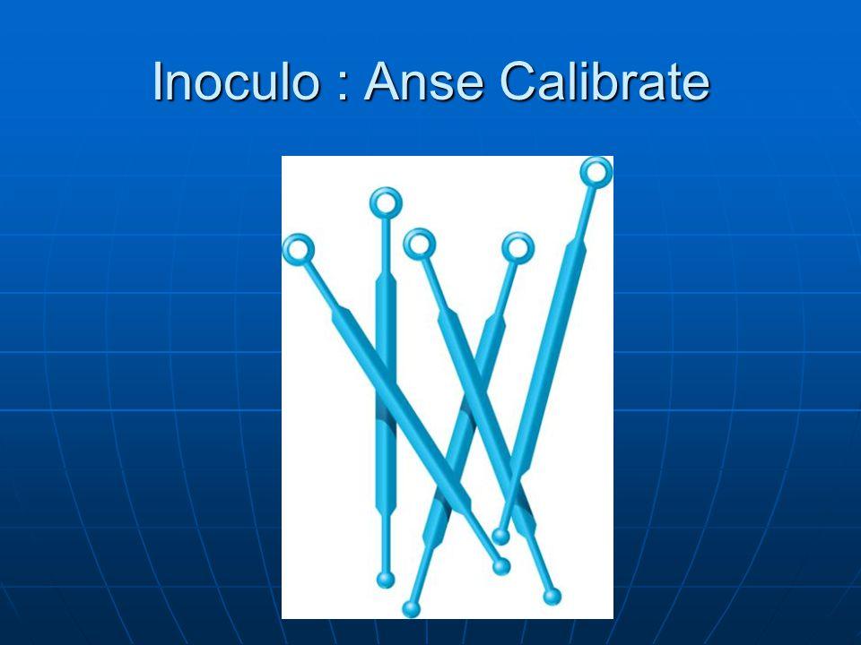 Inoculo : Anse Calibrate