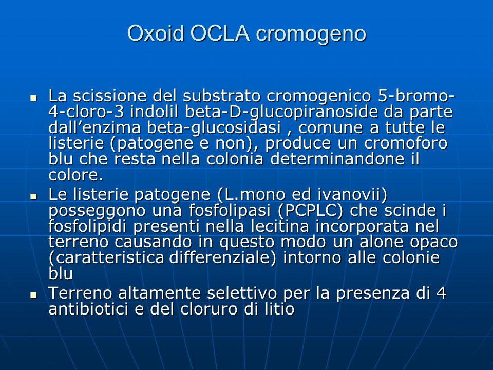 Oxoid OCLA cromogeno