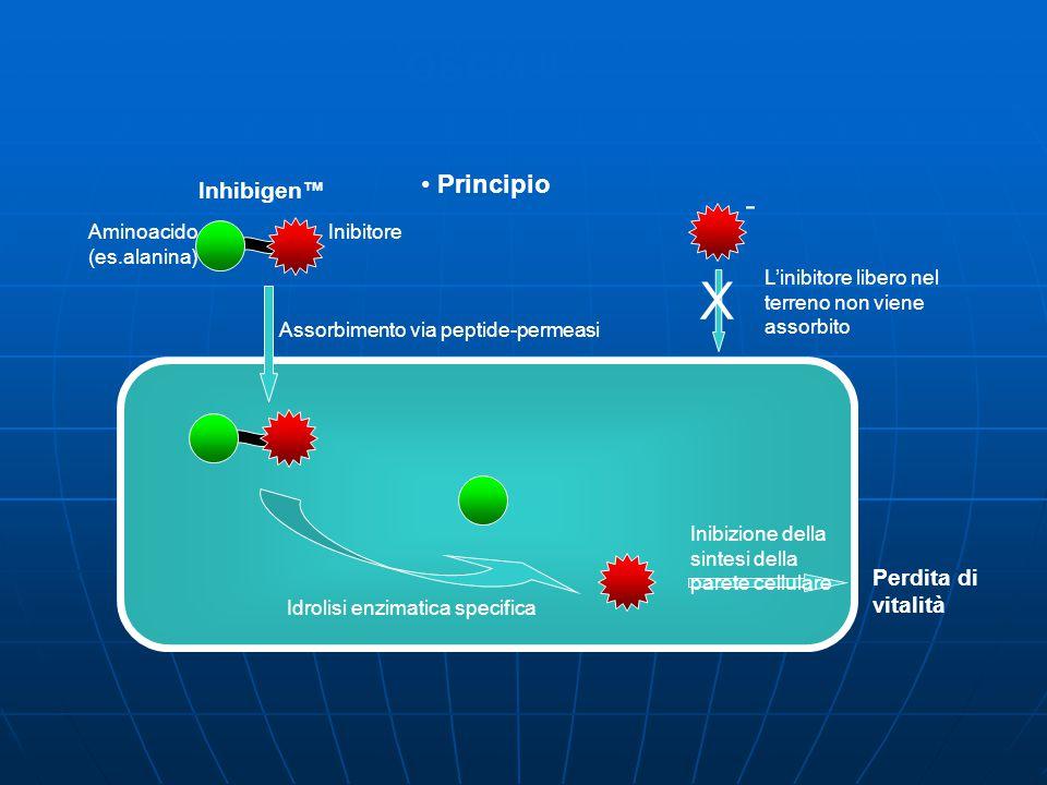 X OSCM II - Principio Inhibigen™ Perdita di vitalità Inibitore