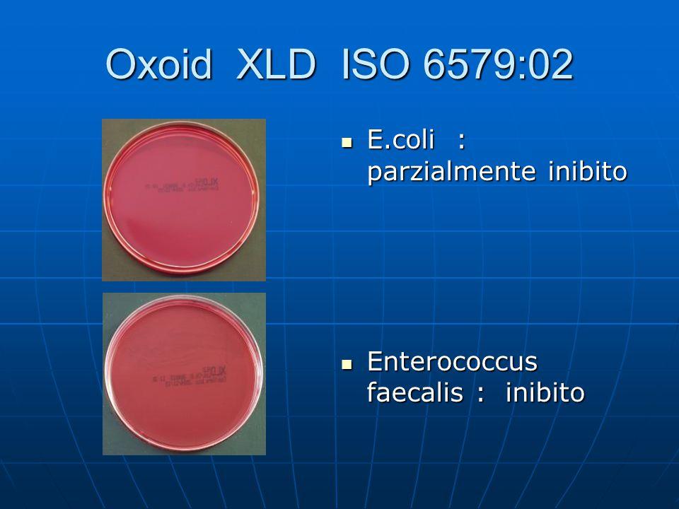 Oxoid XLD ISO 6579:02 E.coli : parzialmente inibito