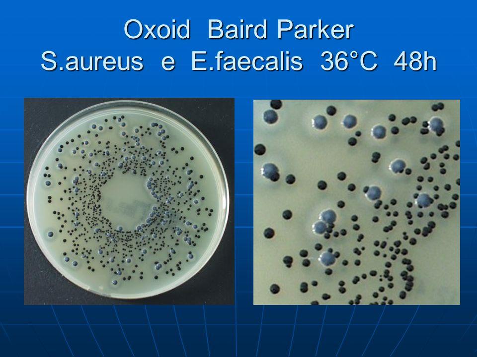 Oxoid Baird Parker S.aureus e E.faecalis 36°C 48h