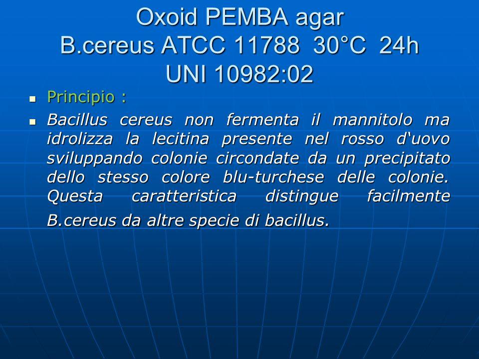 Oxoid PEMBA agar B.cereus ATCC 11788 30°C 24h UNI 10982:02