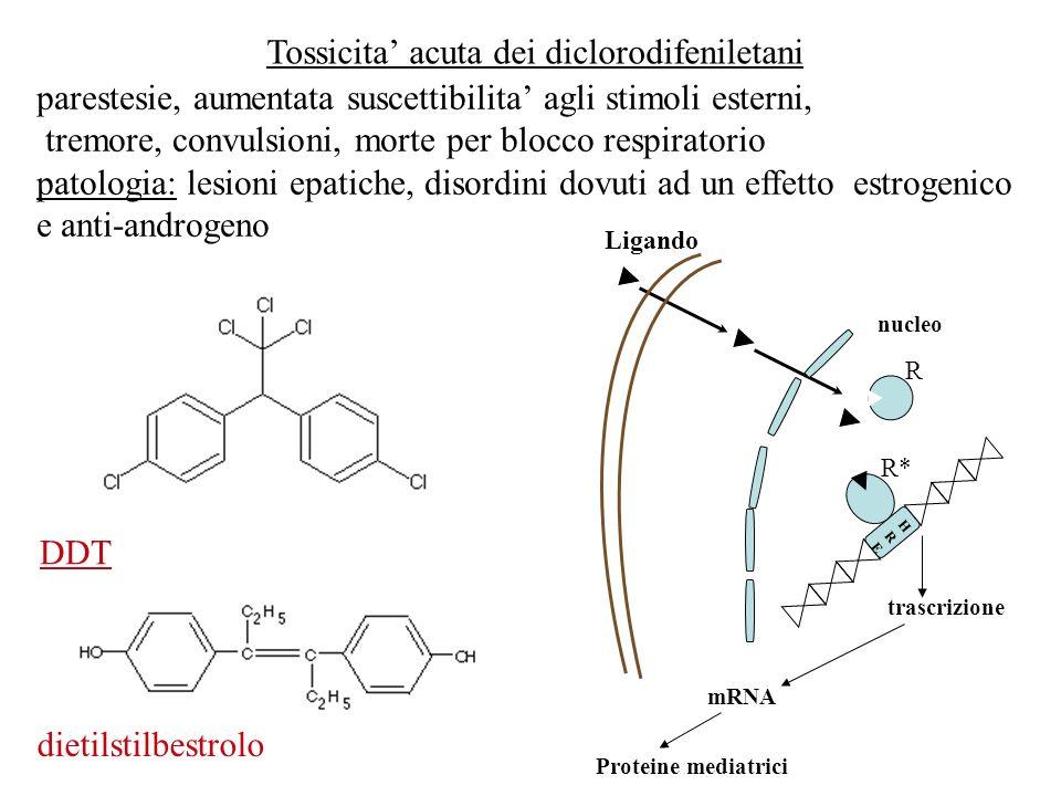Tossicita' acuta dei diclorodifeniletani
