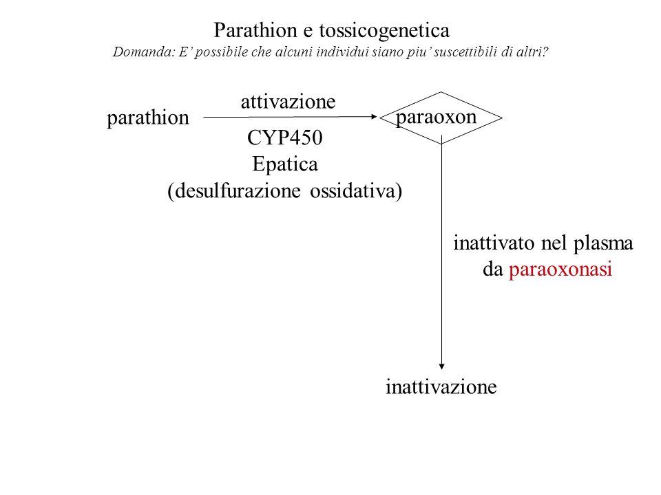 Parathion e tossicogenetica