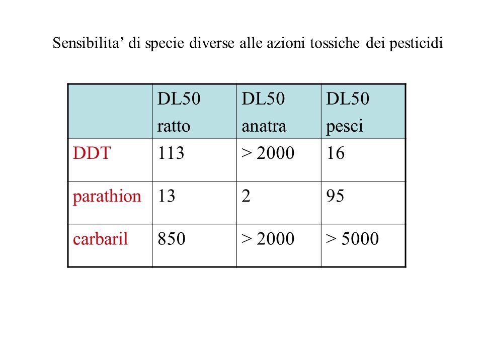 DL50 ratto anatra pesci DDT 113 > 2000 16 parathion 13 2 95