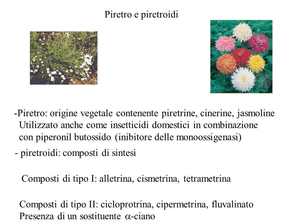 Piretro e piretroidi Piretro: origine vegetale contenente piretrine, cinerine, jasmoline.