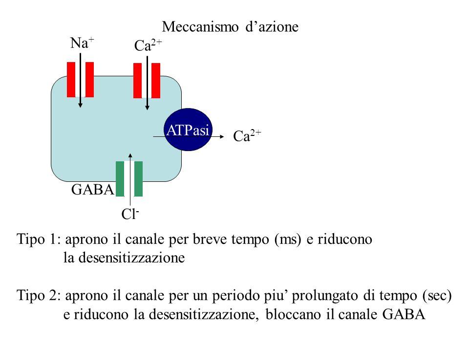 Meccanismo d'azione Na+ Ca2+ ATPasi. Ca2+ GABA. Cl- Tipo 1: aprono il canale per breve tempo (ms) e riducono.