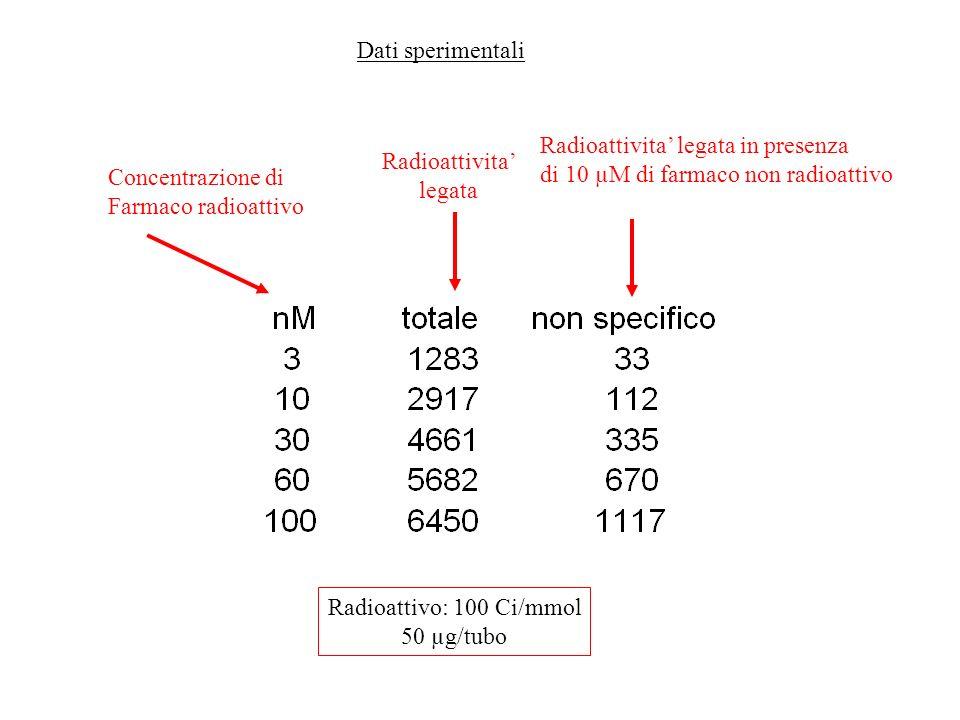 Dati sperimentali Radioattivita' legata in presenza. di 10 µM di farmaco non radioattivo. Radioattivita'