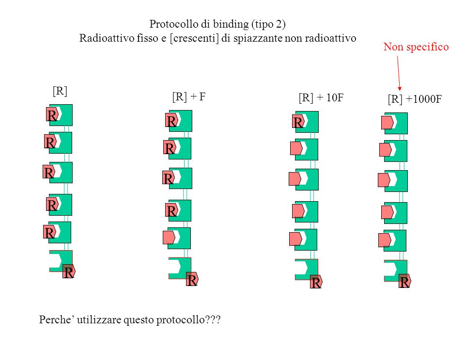 R R R R R R R R R R R Protocollo di binding (tipo 2)