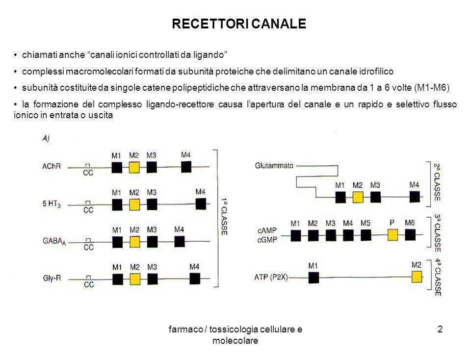 farmaco / tossicologia cellulare e molecolare