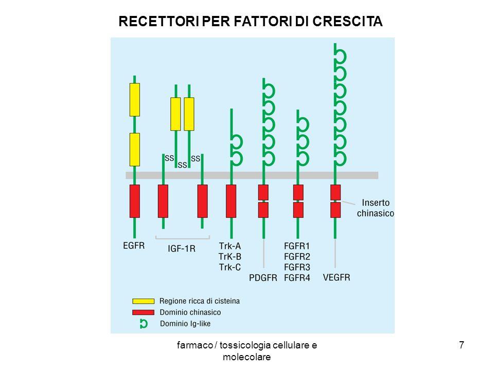 RECETTORI PER FATTORI DI CRESCITA