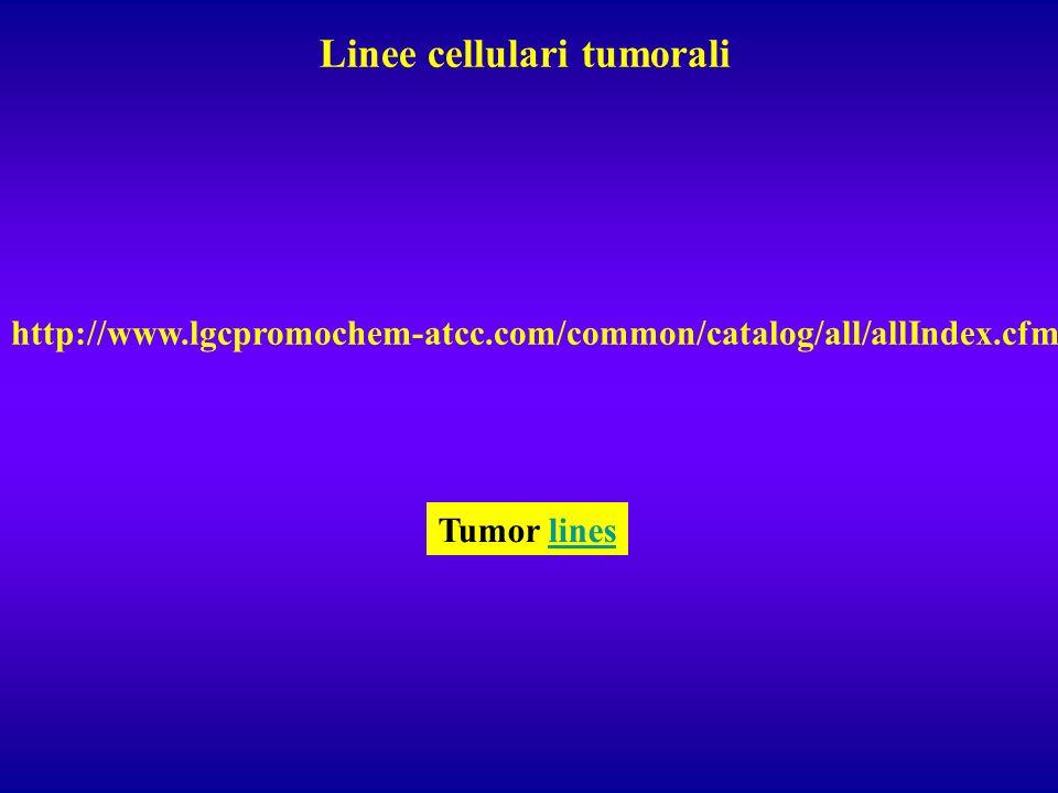 Linee cellulari tumorali