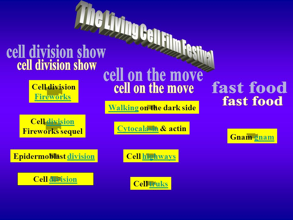 The Living Cell Film Festival