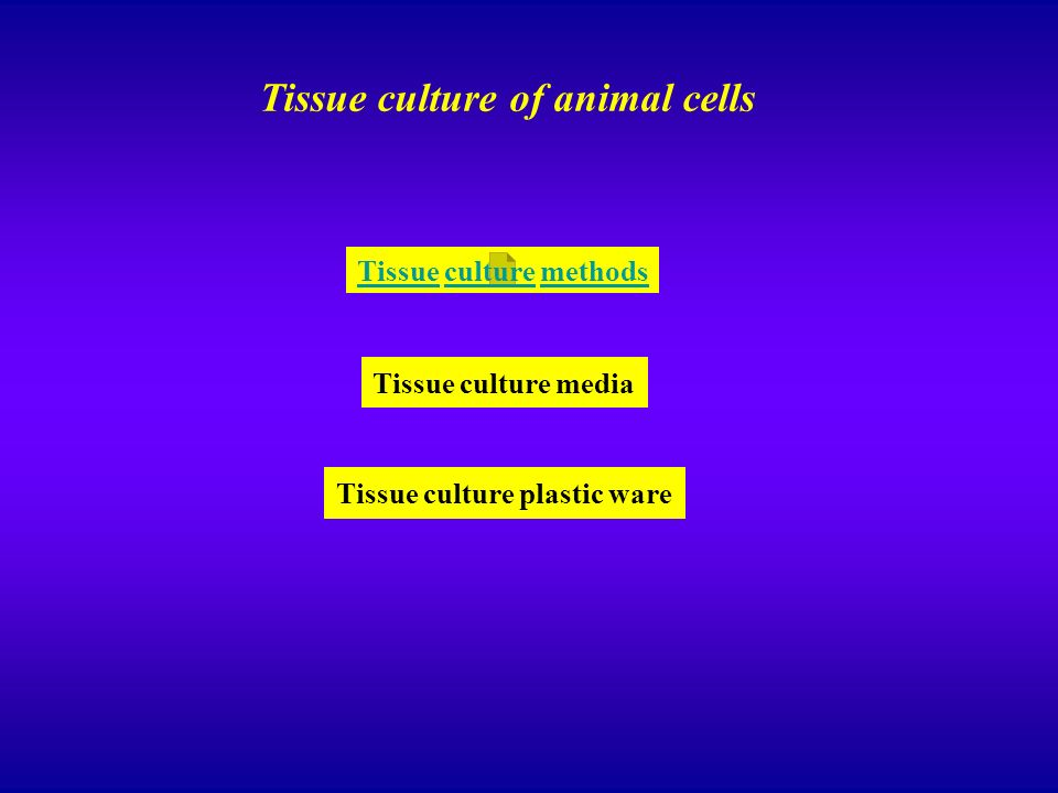 Tissue culture of animal cells