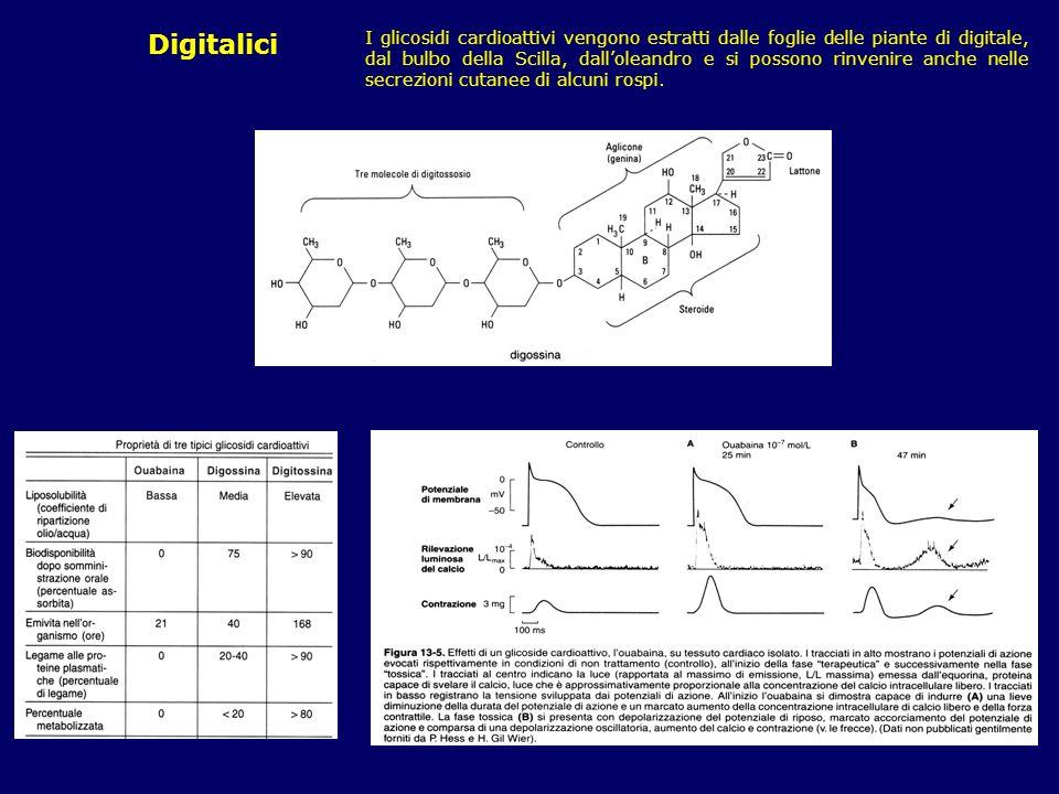 I glicosidi cardioattivi vengono estratti dalle foglie delle piante di digitale, dal bulbo della Scilla, dall'oleandro e si possono rinvenire anche nelle secrezioni cutanee di alcuni rospi.