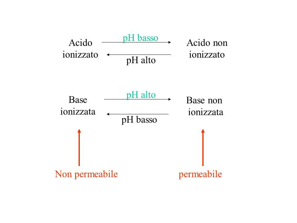 pH basso Acido. ionizzato. Acido non. ionizzato. pH alto. pH alto. Base. ionizzata. Base non.