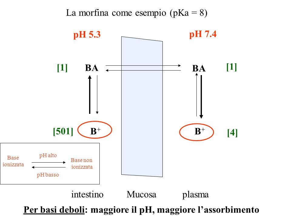 La morfina come esempio (pKa = 8)