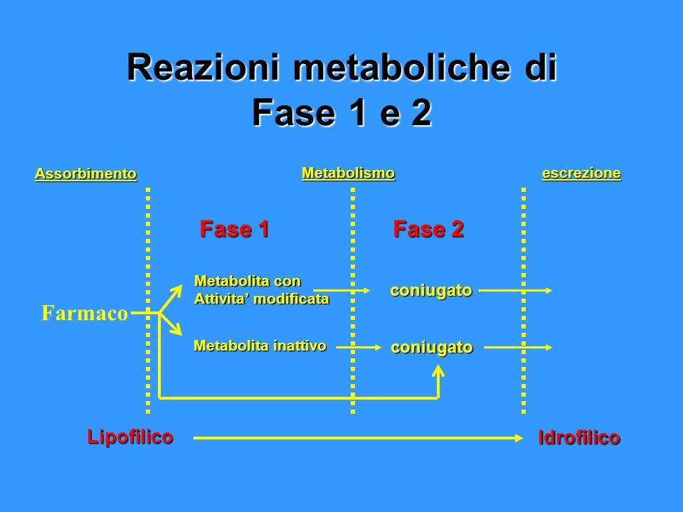 Reazioni metaboliche di Fase 1 e 2