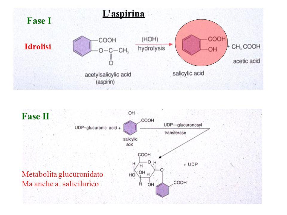L'aspirina Fase I Fase II Idrolisi Metabolita glucuronidato