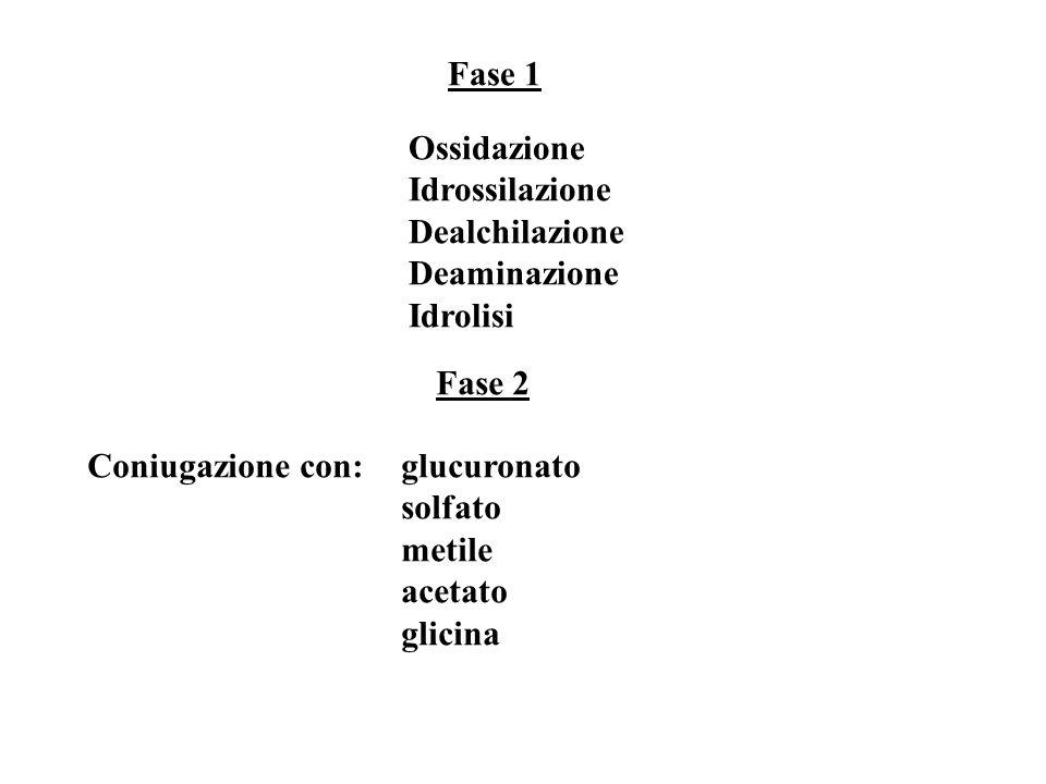 Fase 1 Ossidazione. Idrossilazione. Dealchilazione. Deaminazione. Idrolisi. Fase 2. Coniugazione con: glucuronato.
