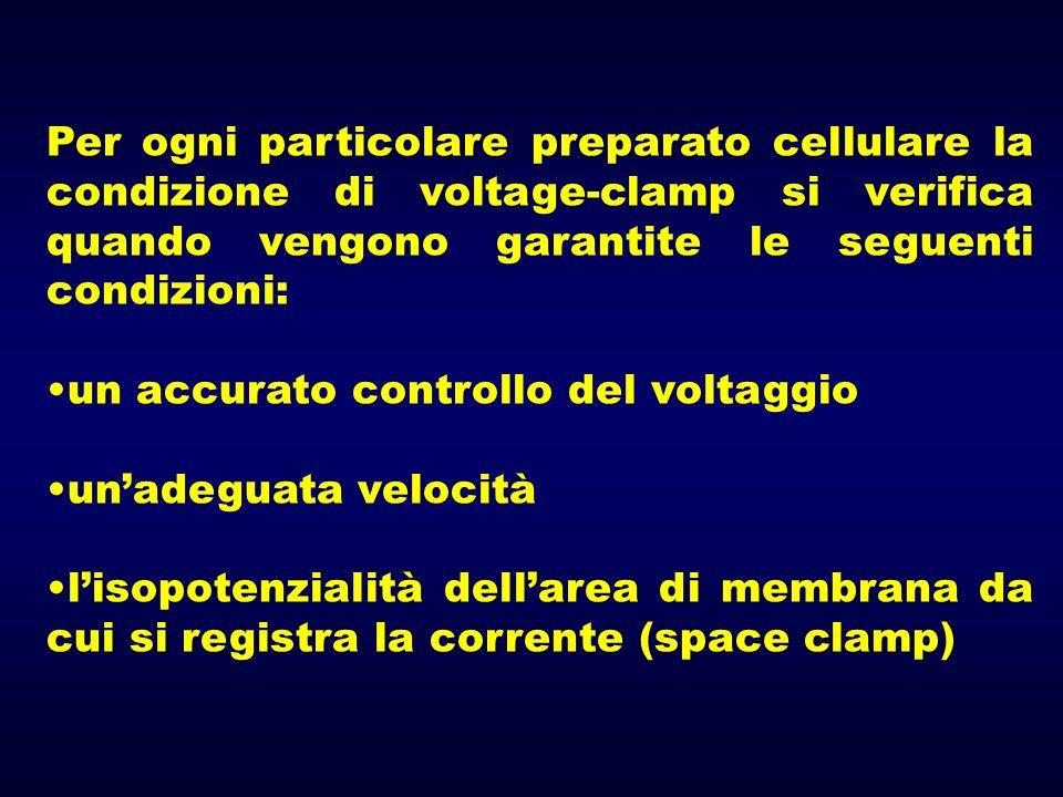 Per ogni particolare preparato cellulare la condizione di voltage-clamp si verifica quando vengono garantite le seguenti condizioni: