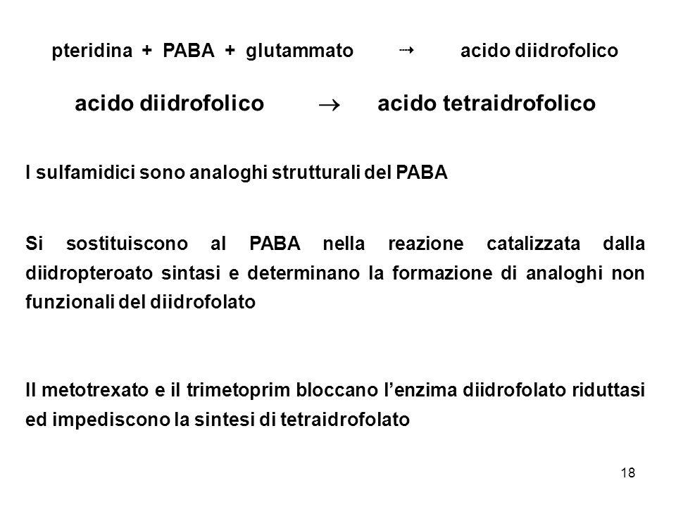 acido diidrofolico  acido tetraidrofolico