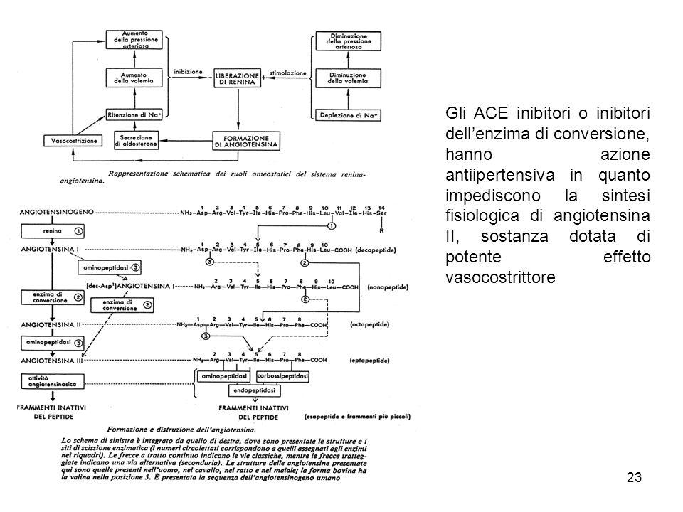 Gli ACE inibitori o inibitori dell'enzima di conversione, hanno azione antiipertensiva in quanto impediscono la sintesi fisiologica di angiotensina II, sostanza dotata di potente effetto vasocostrittore