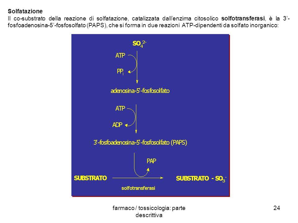 farmaco / tossicologia: parte descrittiva
