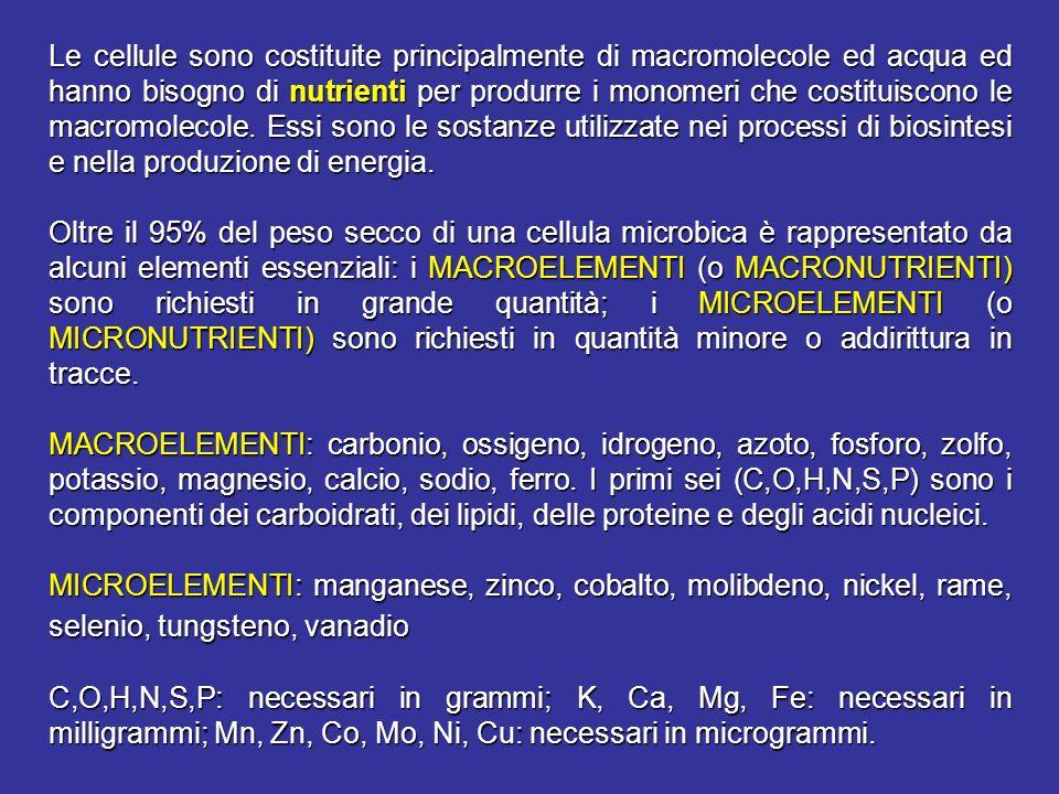 Le cellule sono costituite principalmente di macromolecole ed acqua ed hanno bisogno di nutrienti per produrre i monomeri che costituiscono le macromolecole. Essi sono le sostanze utilizzate nei processi di biosintesi e nella produzione di energia.
