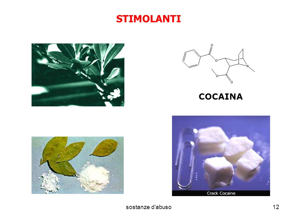 STIMOLANTI COCAINA sostanze d abuso