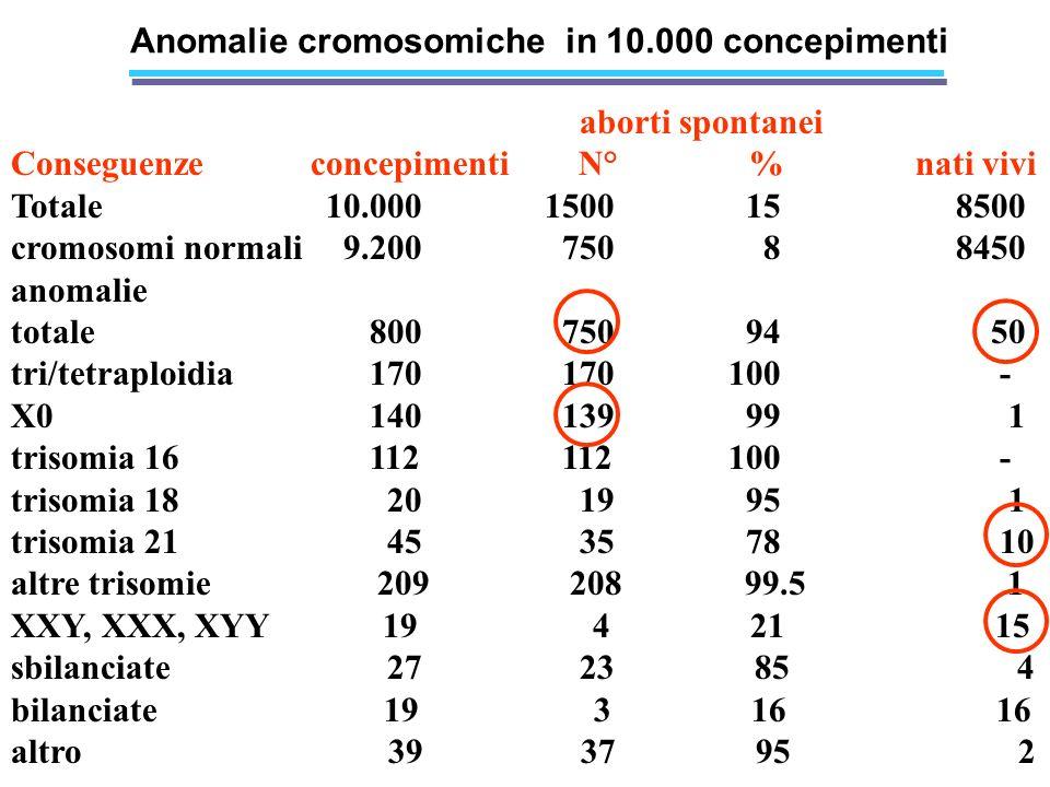 Anomalie cromosomiche in 10.000 concepimenti