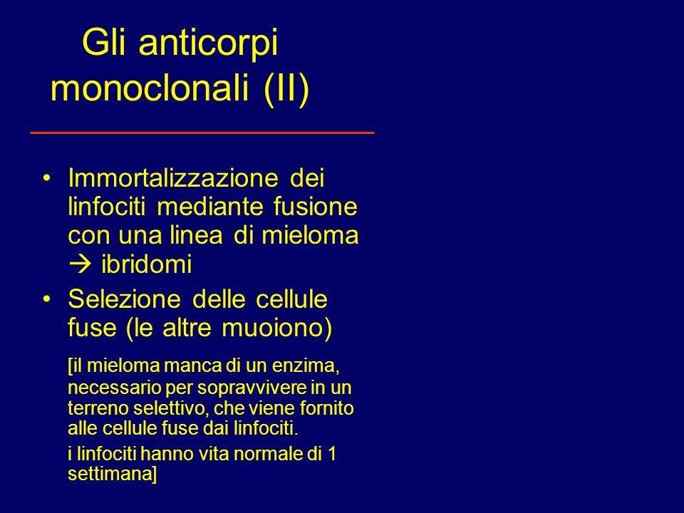 Gli anticorpi monoclonali (II)