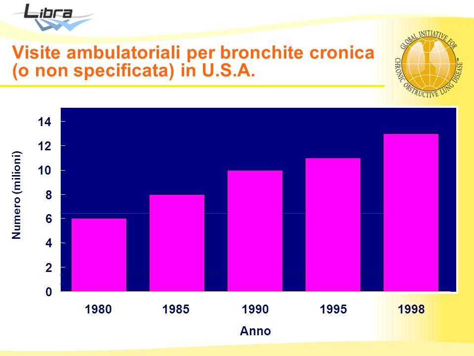 Visite ambulatoriali per bronchite cronica (o non specificata) in U. S