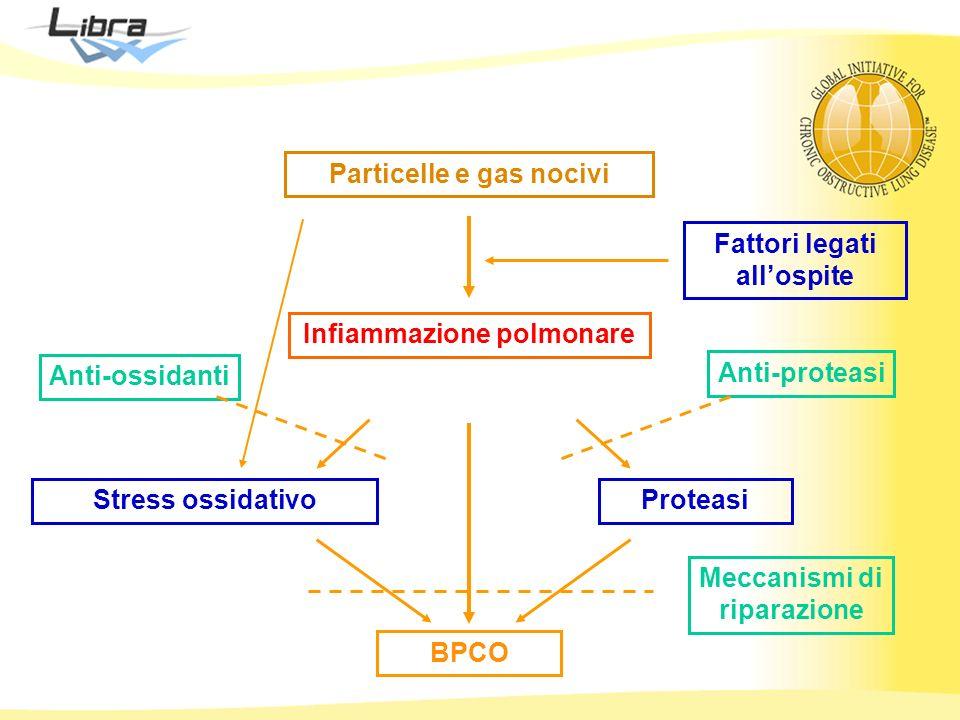 Particelle e gas nocivi
