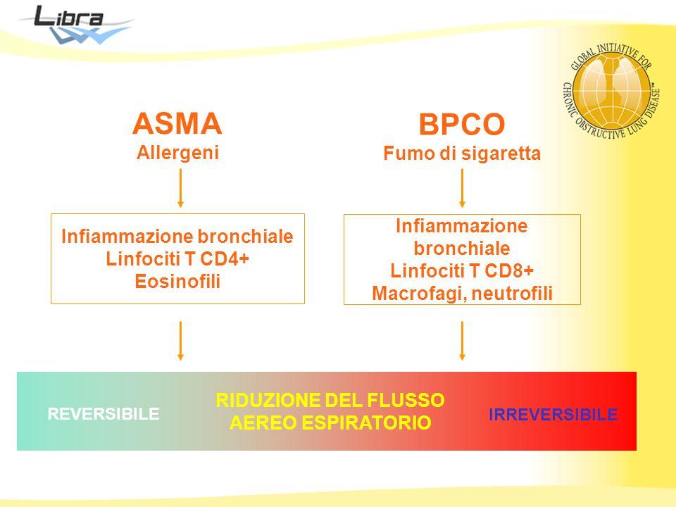 ASMA BPCO Allergeni Fumo di sigaretta Infiammazione bronchiale