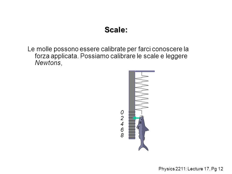 Scale: Le molle possono essere calibrate per farci conoscere la forza applicata. Possiamo calibrare le scale e leggere Newtons,