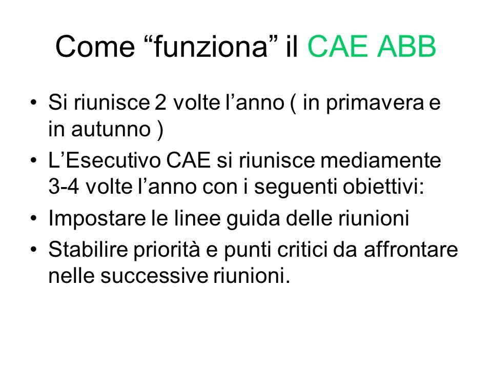 Come funziona il CAE ABB