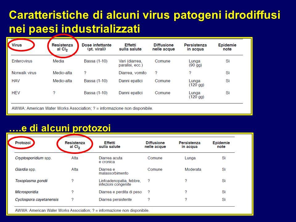 Caratteristiche di alcuni virus patogeni idrodiffusi nei paesi industrializzati