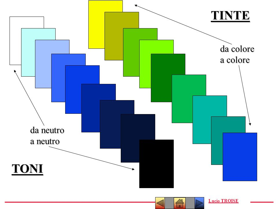 TINTE da colore a colore da neutro a neutro TONI Lucio TROISE