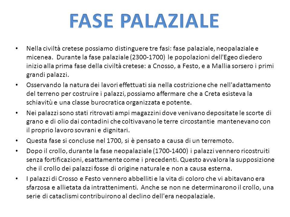 FASE PALAZIALE