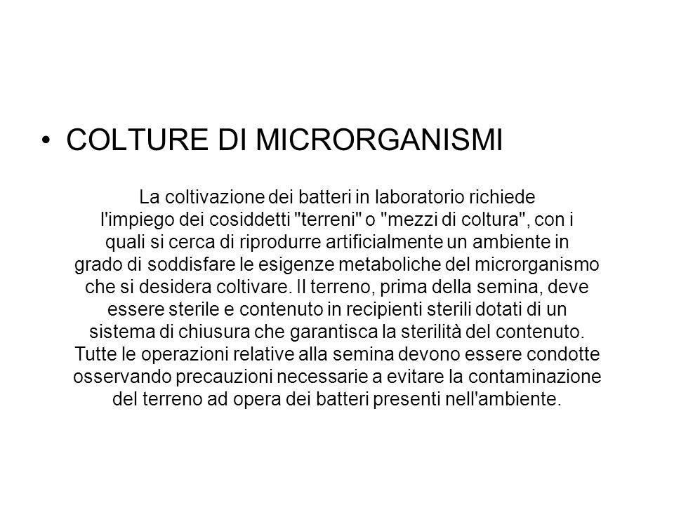 COLTURE DI MICRORGANISMI