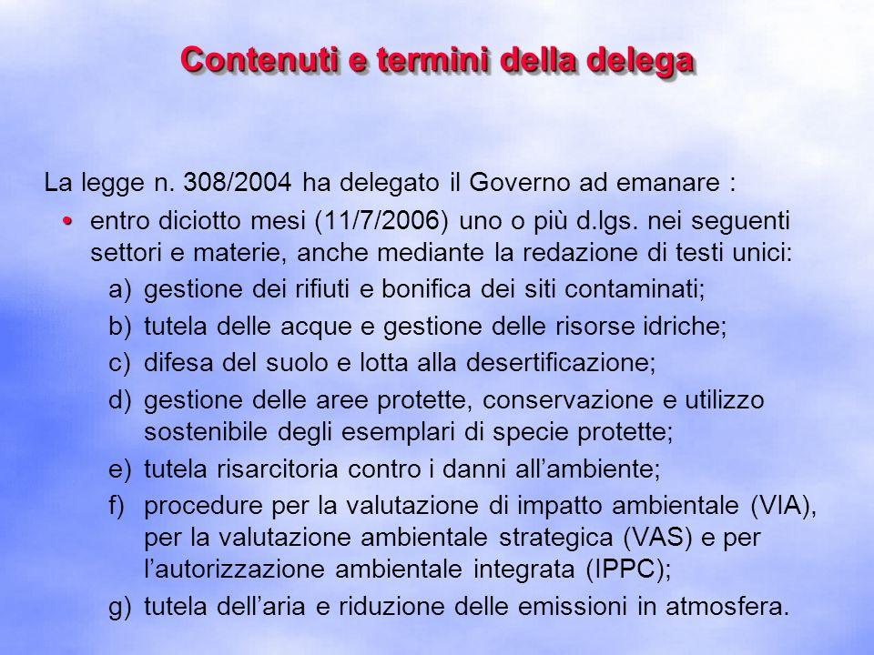 Contenuti e termini della delega