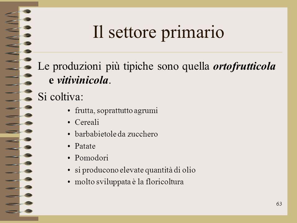 Il settore primario Le produzioni più tipiche sono quella ortofrutticola e vitivinicola. Si coltiva: